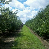 Photo taken at Stepp Apple Orchard by Stephanie Y. on 8/6/2012