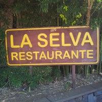 """Foto tomada en Restaurante """"La Selva"""" por Nástienka F. el 8/3/2012"""