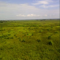 Photo taken at Paynes Prairie Preserve State Park by Arlene C. on 9/4/2012