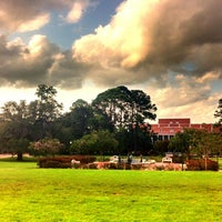 Photo taken at Florida State University by Ashley C. on 8/12/2012