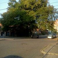 Photo taken at Olive & Boylston Tree by K!K on 9/9/2011