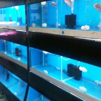 Photo taken at Qian Hu Pet Shop by Sylvia T. on 12/29/2011