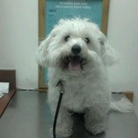 Photo taken at PetSmart by Sabrina♥ on 1/14/2012