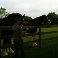 Photo taken at Wolffer Estate Stables by hautecakes on 5/29/2011