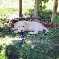 Photo taken at Our Pet and Plant Care by Hunter on 6/19/2012