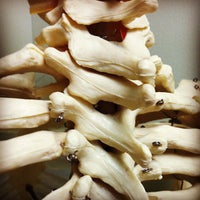 Geary Chiropractic Clinic