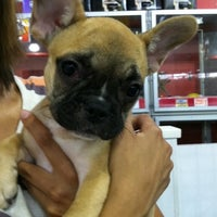 Photo taken at Uncle Bill's Pet Centers West by Linda K. on 7/13/2012