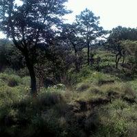 Photo taken at Zona Forestal Lomas de Zapopan by Iván S. on 7/25/2012