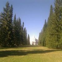 Снимок сделан в Дворцово-парковый ансамбль «Ораниенбаум» пользователем Alexey N. 5/1/2012