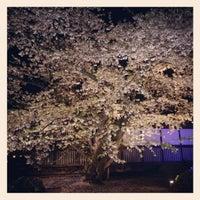 Photo taken at Hirosaki Park by m34szk on 5/4/2012