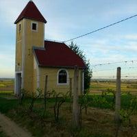 Photo taken at Prkos - vinogradi by Branimir B. on 4/26/2012