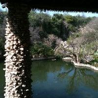 Photo taken at Japanese Tea Gardens by Steve F. on 3/2/2012