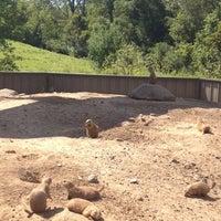 Photo taken at Prairie Dog Park by digi s. on 8/17/2012