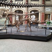 Foto scattata a Museum für Naturkunde da Alexey A. il 6/28/2012