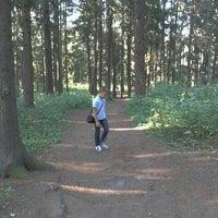 Das Foto wurde bei Ватутинский лес von Tatiana O. am 8/19/2012 aufgenommen