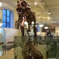 Photo taken at David H. Koch Dinosaur Wing by Rita I. on 9/9/2012