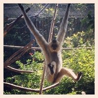 Photo taken at Monkey Trail by Cat on 8/4/2012