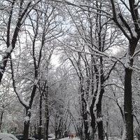 Снимок сделан в Павлівський сквер пользователем Svetlana M. 4/9/2012