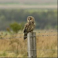 Photo taken at Hedleyhope Fell Nature Reserve by Gregg S. on 3/14/2012
