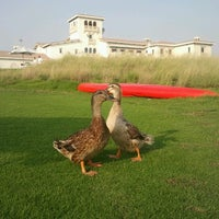 Photo taken at Yas Links Golf Course by Dharma R T. on 6/30/2012