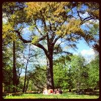 Foto tomada en Inman Park por Maigh X. el 3/25/2012