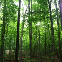 Photo taken at Sacred Grove by Holly M. on 8/14/2012