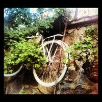9/3/2012 tarihinde Emine Ö.ziyaretçi tarafından Cafe Botanica'de çekilen fotoğraf