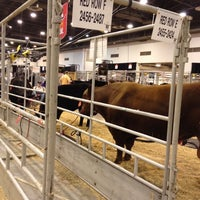 Photo taken at Houston Livestock Show and Rodeo by Matt M. on 2/29/2012