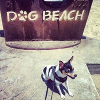 Photo taken at Ocean Beach Dog Beach by @Roem on 6/30/2012