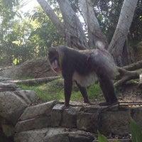 Photo taken at Monkey Trail by Angela on 5/28/2012