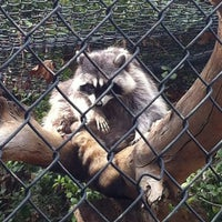Photo taken at Orange County Zoo by Michelle F. on 3/24/2012