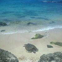 Foto tomada en Laniakea (Turtle) Beach por Craig R. el 4/19/2012