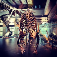 Photo taken at Dinosaur Hall by Antonio F. on 7/15/2012