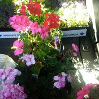 Photo taken at Cannor Nursery by Ron N. on 5/14/2012