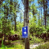 Photo taken at Picayune Strand State Forest by Brian on 6/12/2012