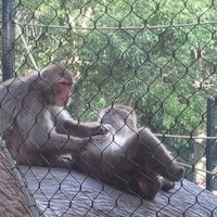 Photo taken at Zoo Brew by Suits Up D. on 6/20/2012