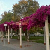 Photo taken at UA - Universidad de Alicante / Universitat d'Alacant by Jorge A. on 5/18/2012