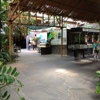 Das Foto wurde bei Kölner Zoo von Mona L. am 9/2/2012 aufgenommen