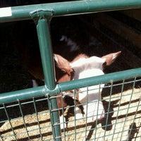 Photo taken at Cherry Grove Farm by Jesse B. on 4/6/2012