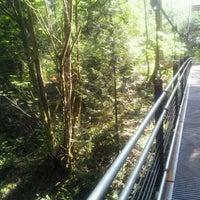 Photo taken at Bellevue Botanical Garden by Monica C. on 7/10/2012
