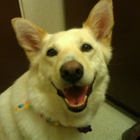 Photo taken at Pet Samaritan Clinic by Leila D. on 6/4/2012