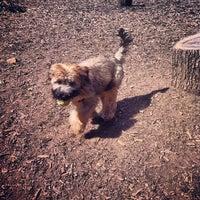 Photo taken at Cunningham Park Dog Run by Jong on 8/26/2012
