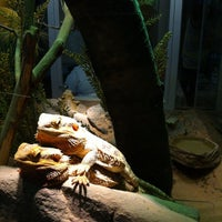 Photo taken at Reid Park Zoo by David Z. on 7/21/2012