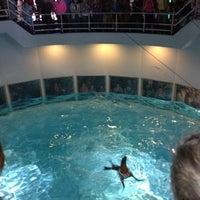 Photo taken at Aquarium of Niagara by Kariann W. on 8/18/2012