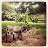 Das Foto wurde bei Tierpark EuregioZoo von Axel J. am 6/23/2012 aufgenommen