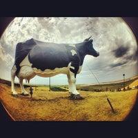 Photo taken at Salem Sue - World's Largest Holstein Cow by Erik H. on 7/24/2012