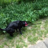 Photo taken at Rice Creek Dog Park by Kathleen G. on 6/3/2012