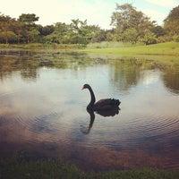 Foto tirada no(a) Singapore Botanic Gardens por Arleni N. em 4/2/2012
