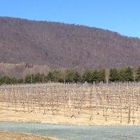 Photo taken at Pollak Vineyards by Natalie B. on 2/12/2012