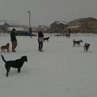 Foto scattata a Stapleton Dog Park da Dave G. il 2/3/2012